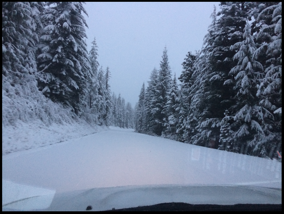 paradise washington mt rainier unplowed road