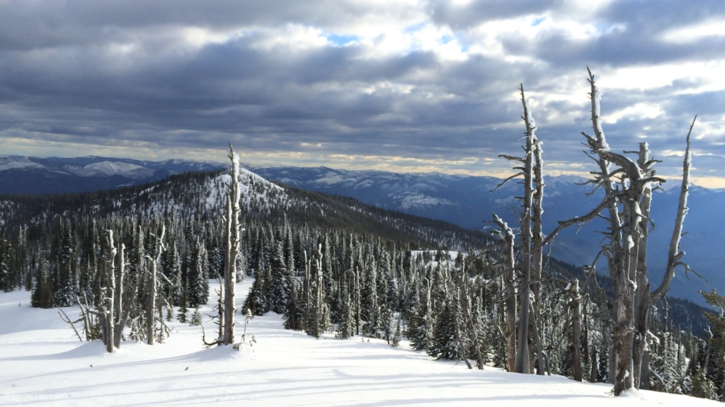 Looking south from Stark Mountain toward the Bitterroot Range and Idaho state line.